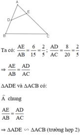 Giải bài 40 trang 80 SGK Toán 8 Tập 2 | Giải toán lớp 8